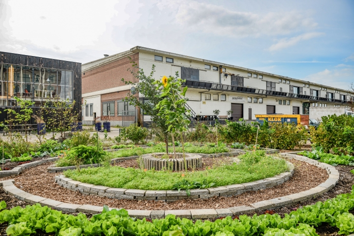 Makers District - Ontwikkelingskansen in M4H