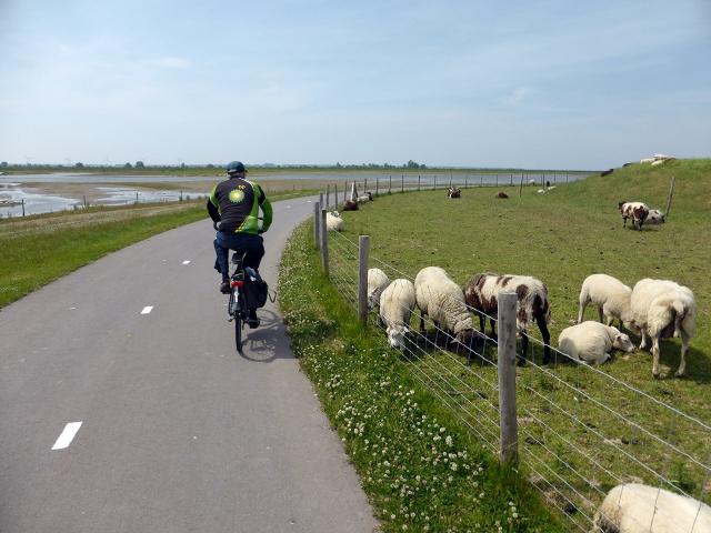 Fiets: Hollandse Banen